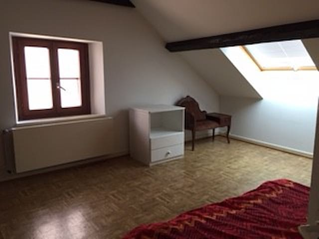 paysage de montagne et lac, Good Value for money! - Montreux - Flat
