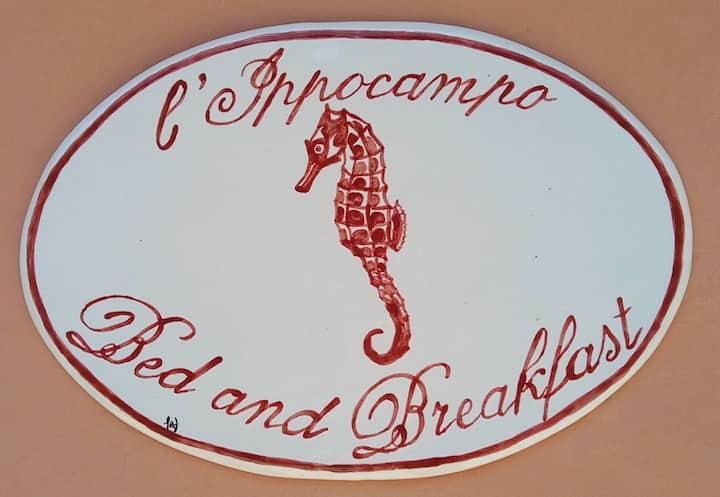B&B L'Ippocampo