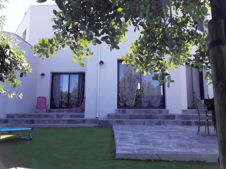 Contemporary beachfront villa