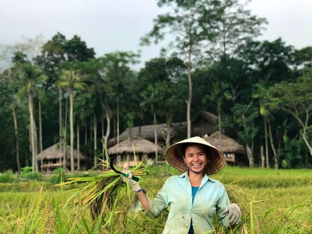 Pù Luông/ Eco Bamboo Bungalow in Puluong Vietnam