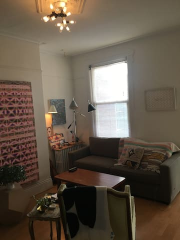 Cute private BR and LR in Greenpoint, Brooklyn. - Brooklyn - Apartment