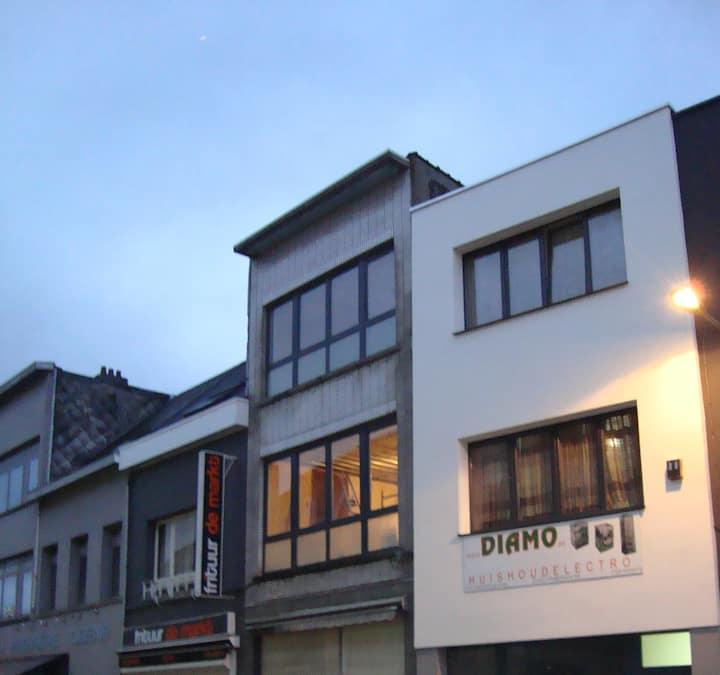 Newly renovated house in Merksem