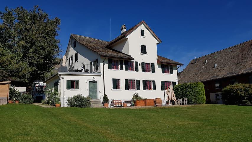 Berghalde - Zürich - Witikon