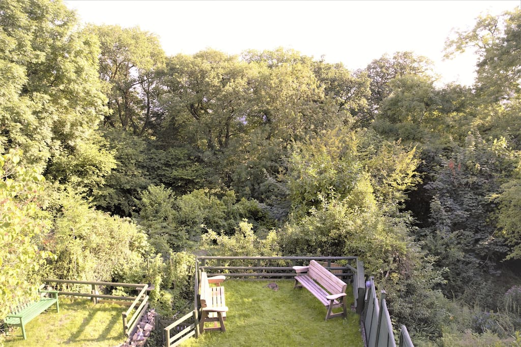 Views from the veranda out south over the garden and treetops.