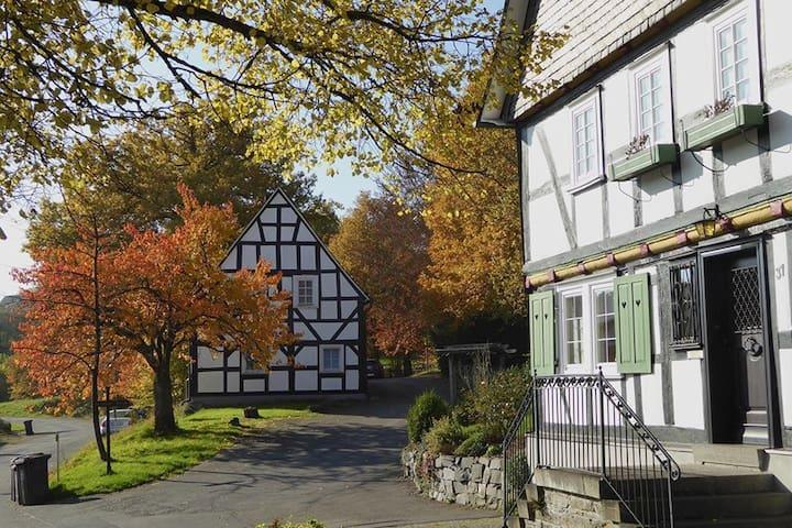 Ferienwohnung in historischem Ortskern nahe Siegen