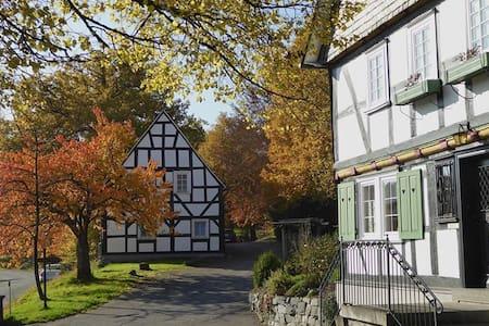 Ferienwohnung in historischem Ortskern nahe Siegen - Freudenberg - Huoneisto