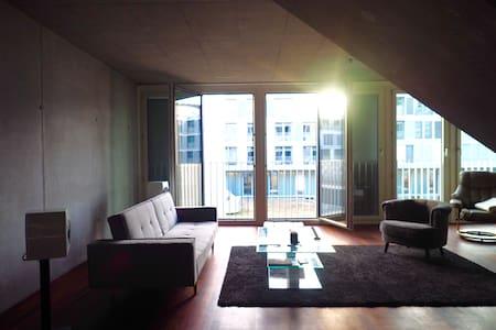 Modern 2-Storey Loft / Zurich Center - Zurigo