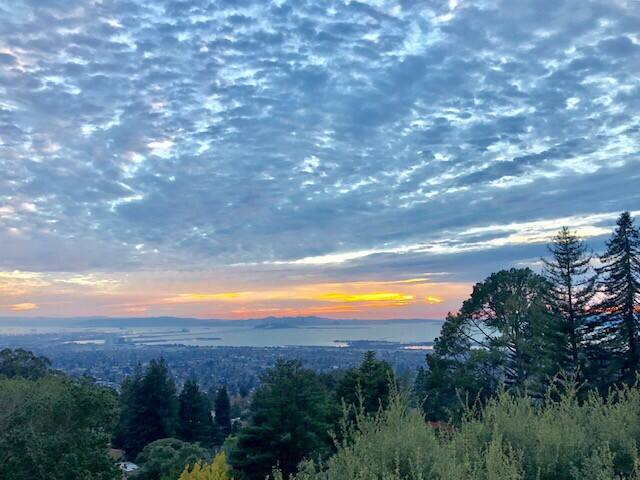Berkeley Hills Studio with incredible views.