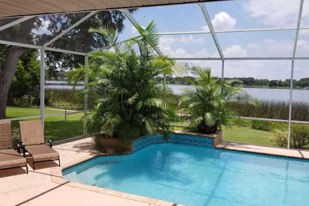 Southern Exposure pool