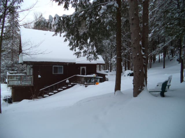 FAT SQUIRRELS SNOWMOBILER'S CHALET NORTH OF APSLEY