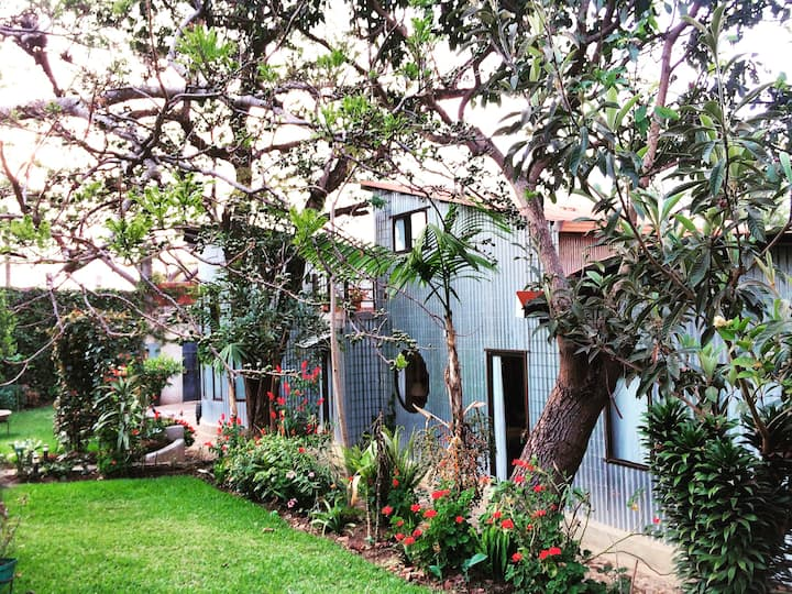 "Village Life in Casa San Juan, 6 ""casitas"""
