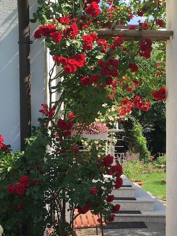 Wohnen, Arbeiten und Natur nahe Erlangen