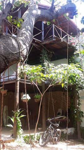 Аутентичная и зелёная посада Кабана Шик 1 этаж