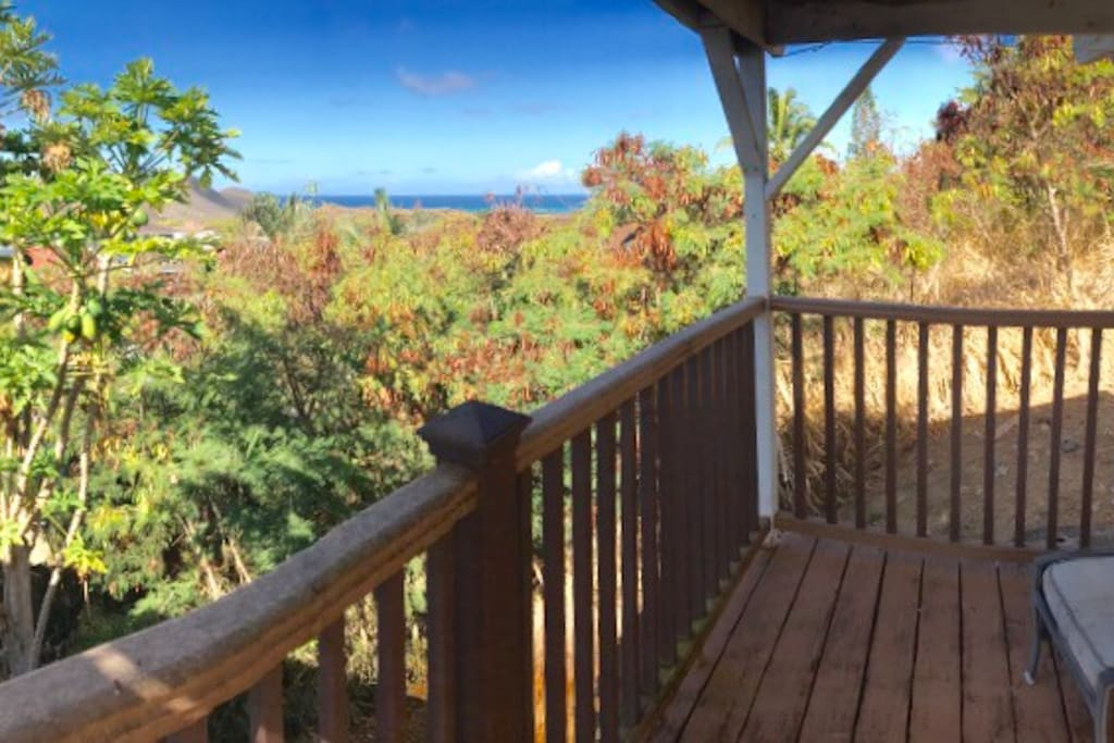 Pick your own papayas from the covered deck while checking out an ocean view!