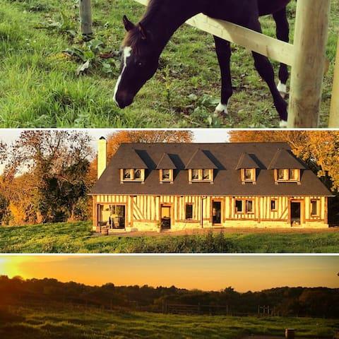 Maison proche Deauville / Honfleur - Les Authieux-sur-Calonne - Casa