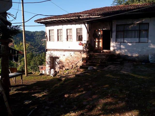 Şentepe Pansiyon/Dağ Evi - Sulak Köyü - Chatka w górach