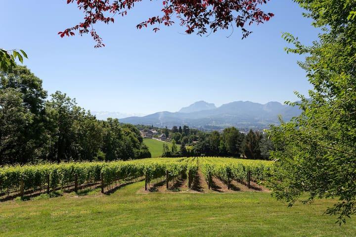 10 mins de Chambéry ! Beau Chateau, Piscine, Fitness sur place