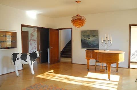 Fancy room in a cool house, breakfast & BaselCard