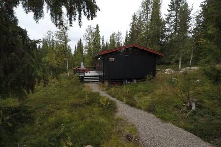 Koselig hytte i Trysil-Knut fjellverden (720 moh)