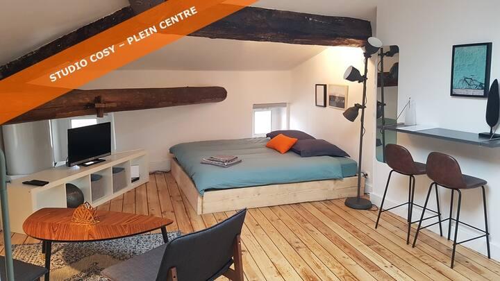 Studio sous les toits, 25 mn Lyon Centre