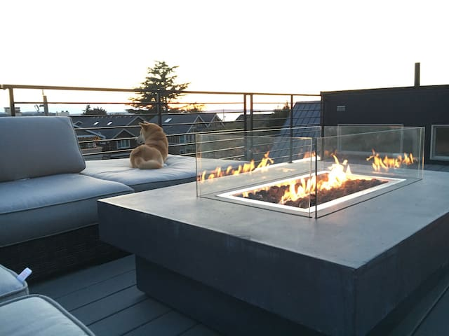 Modern beach house 4 bedrooms with roof top deck - Seattle - House