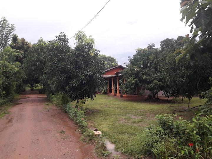 Sigiriya Shan Mango homestay