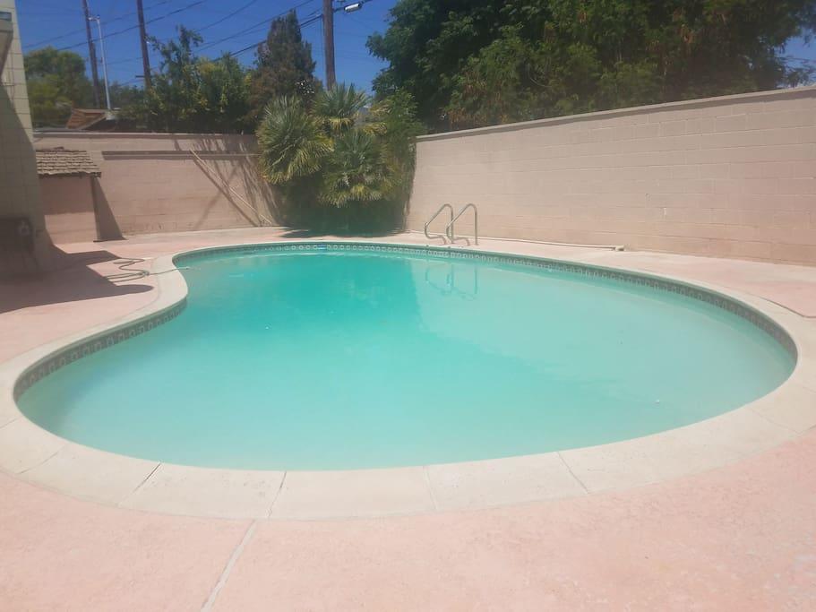 Beautiful pool!