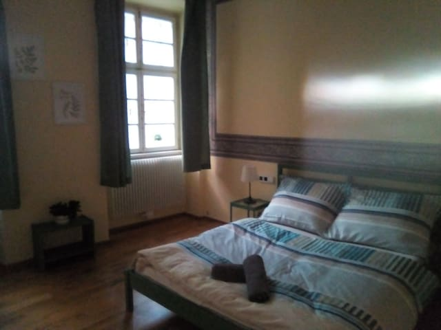 Big room for 4 people in the Žižkov