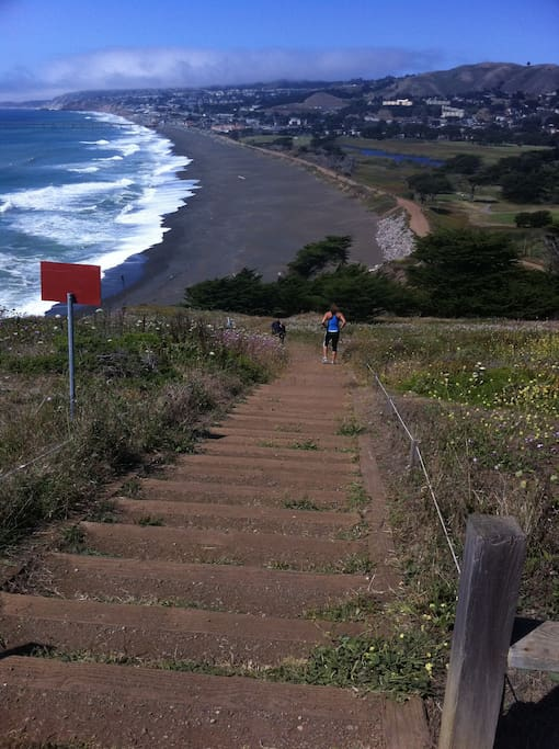 QHiking trail in Pacifica