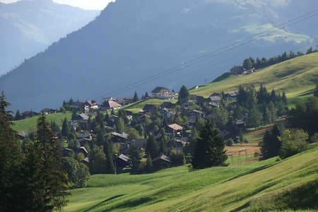 Newly renovated, sunny 2 bedroom chalet apartment