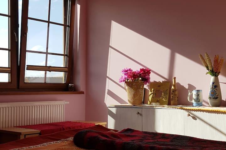 Przytulne mieszkanie w sercu Kaszub