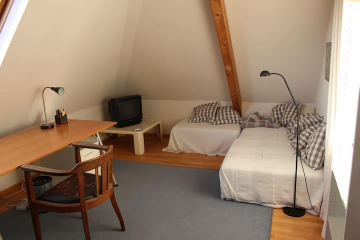 gemütliche Dachwohnung für 1-2 Pers - Heidelberg - Daire