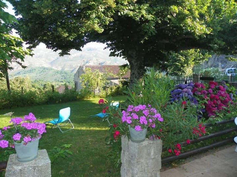 Jardin face à l'Ouest