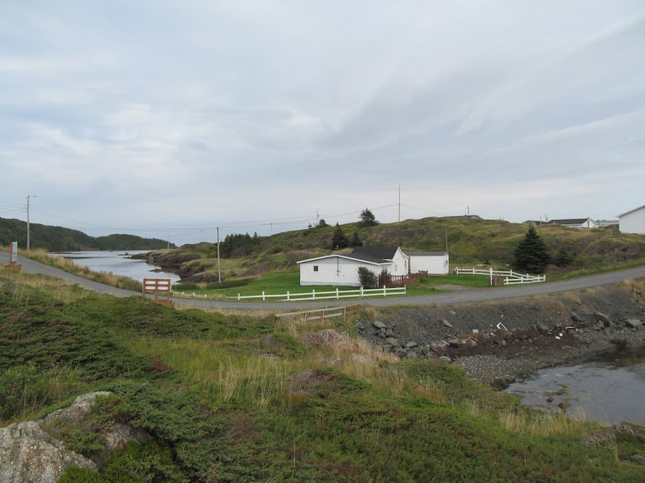 Little pike cottages for rent in herring neck for Cabins in newfoundland