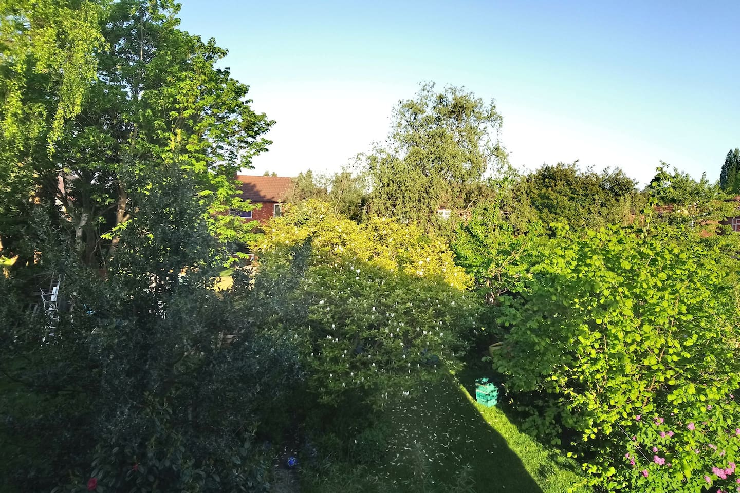 Beautiful green view from the bedroom window, overlooking the peaceful back gardens.
