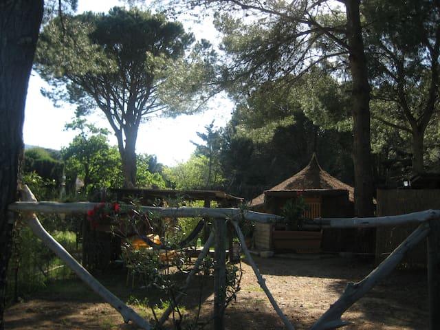 Petite case Argeles/mer Racou