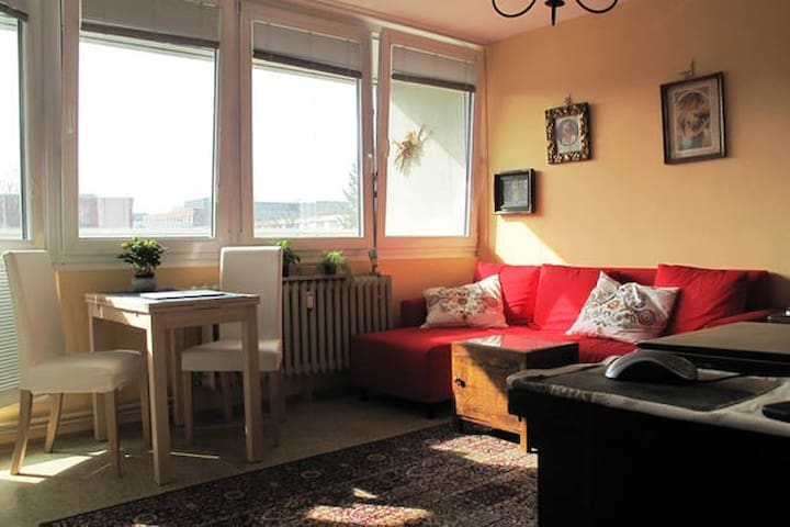 Charming Studio w Balcony, Parkview