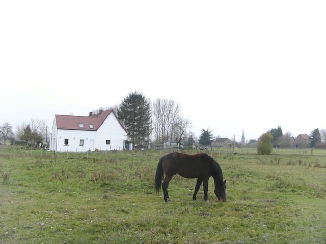 FERME LENFANT 1  GITE RURAL  AU REZ - Bernissart - Jordhytte