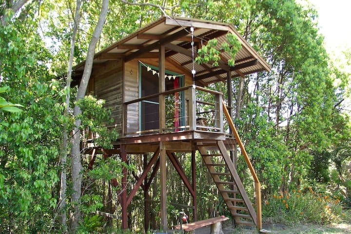 Treehouse with views, Byron hinterland - Main Arm - Ağaç Ev