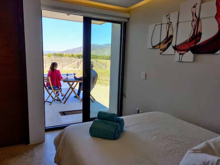 Vineyard front awakening in Valle de Guadalupe.