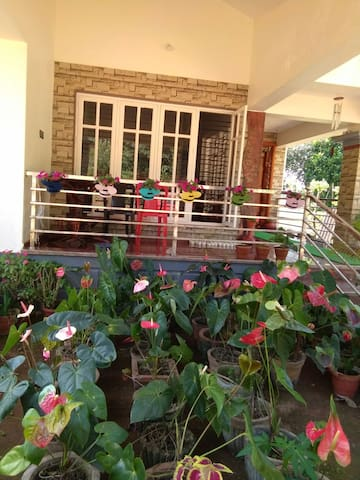Silver leaf Estate stay Sakaleshpur
