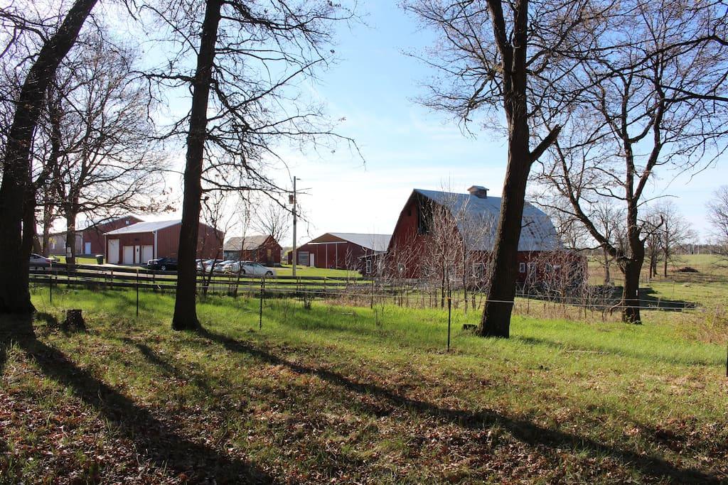 Our sweet little farm.