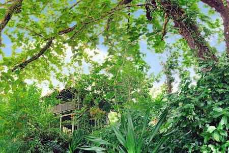 Leaf-house bungalow on private island - Munda - Pulau