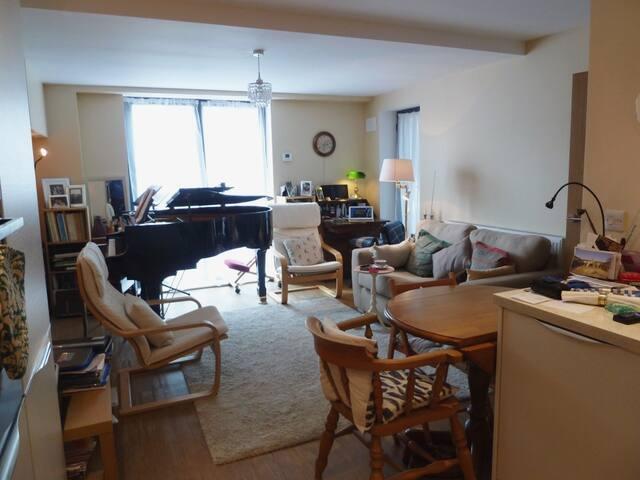 Comfortable, elegant, quiet town-centre apartment.