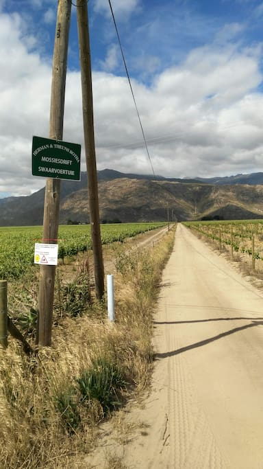 Coming from Rawsonville, 2.3 km down the Boontjiesrivier you will find our farm turn off to your right Mossiesdrift