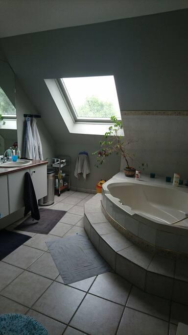 La salle de bain ( avec douche)