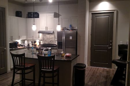 Luxury Apartment in Midtown Atlanta - Atlanta - Pis