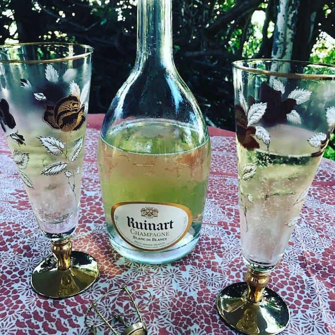 Bubbly on the verandah, mid century glasses!