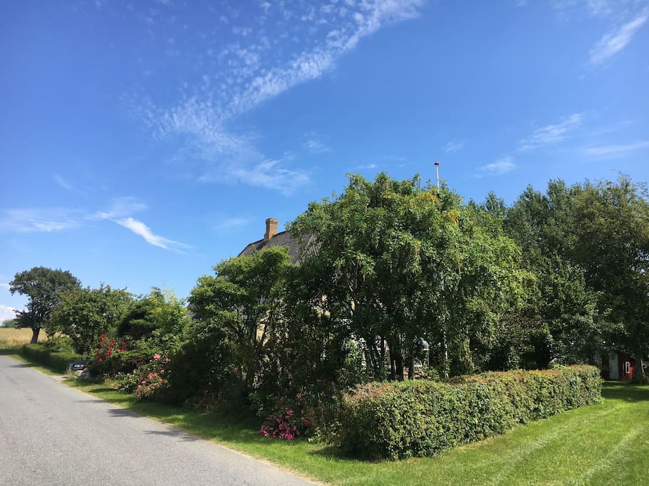 The property is surrounded by fields and trails. The trail on the right makes a nice 'hidden walk' towards the beach and the village