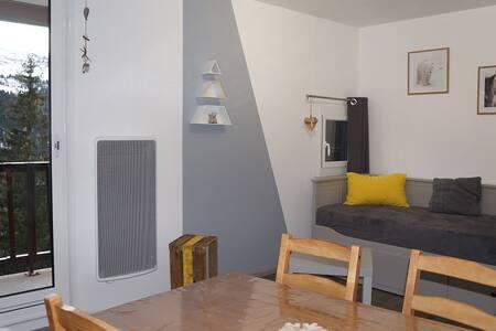 appartement Flaine Forêt plein sud refait a neuf - Arâches-la-Frasse